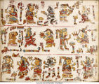 Codex Vindobonensis Mexicanus 1-folio 061